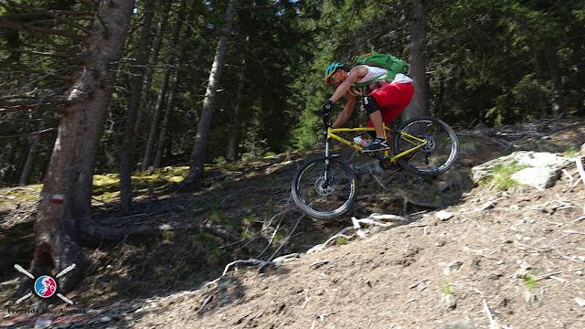 mountainbike brixen plose hardtail enduro