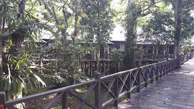 Jembatan kayu di Marriot Mulu Resort and Spa