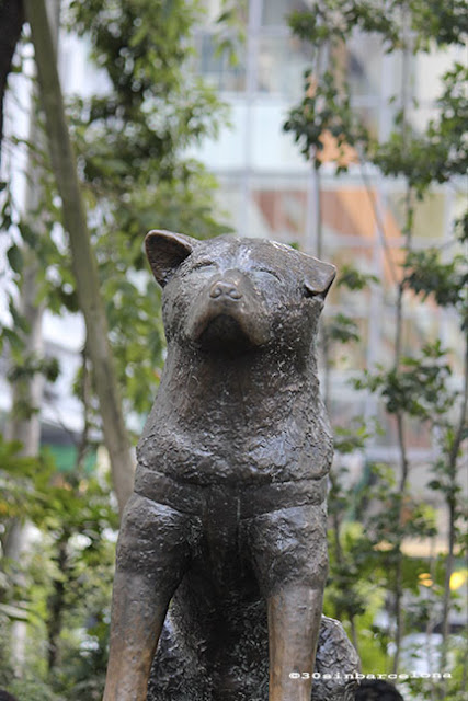 Hachiko, the famous and loved dog in shibuya, Tokyo