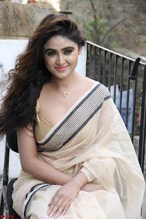 Sony Charishta in Brown saree Cute Beauty   IMG 3616 1600x1067.JPG