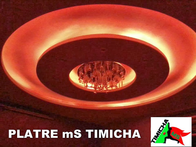 platr ms timicha 2013