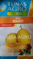 benih melon, kinanti, melon kinanti, melon kulit kuning, tunas agro seed, harga murah, grosir
