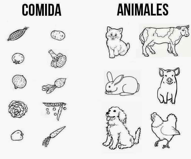 Imagenes Para Colorear De Animales Carnivoros Hervivoros Omnivoros