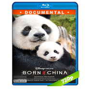 Nacidos en China (2016) BRRip 720p Audio Dual Latino-Ingles