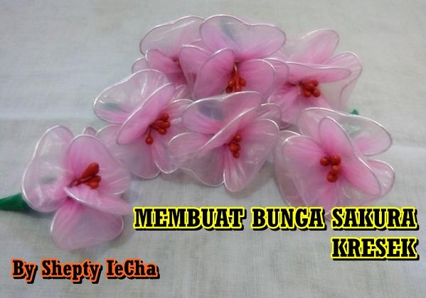 Shepty Iecha Blog