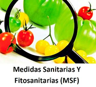 Medidas Sanitarias y Fitosanitarias (MSF)