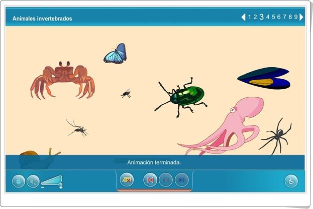 """""""Animales invertebrados"""" (Ciencias Naturales de Primaria). Plataforma Agrega."""