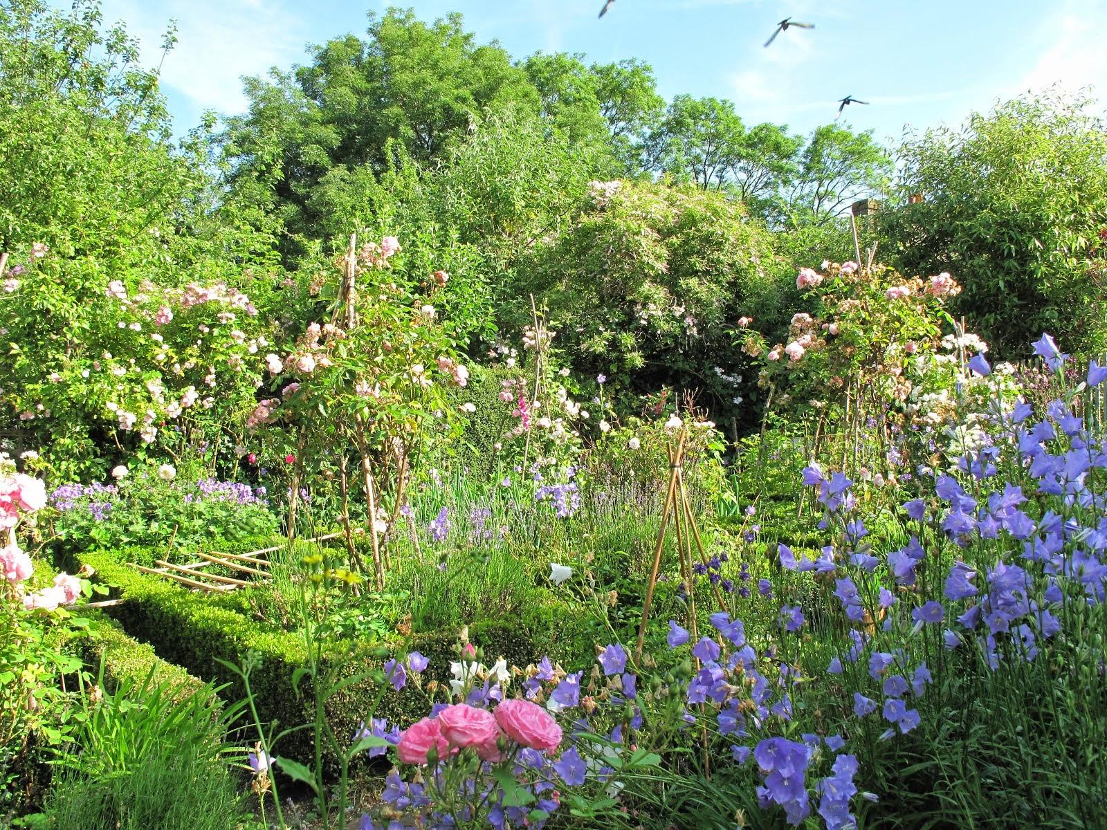Joannes Cottage Garden