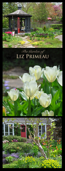 The Beautiful Garden of Liz Primeau