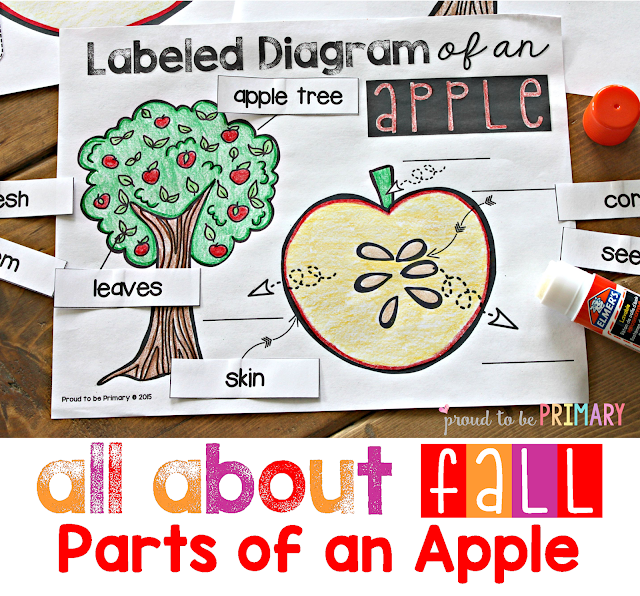 fall lesson plans - parts of an apple