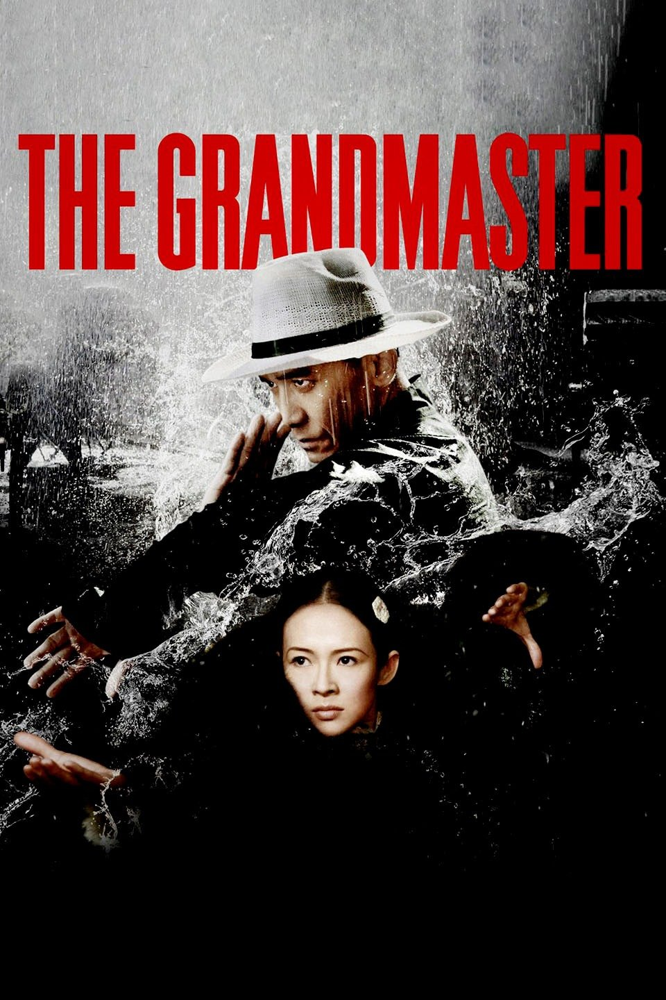 The Grandmaster (2013) Dual Audio 720p Blu-Ray x264 [Hindi – English] ESubs Download