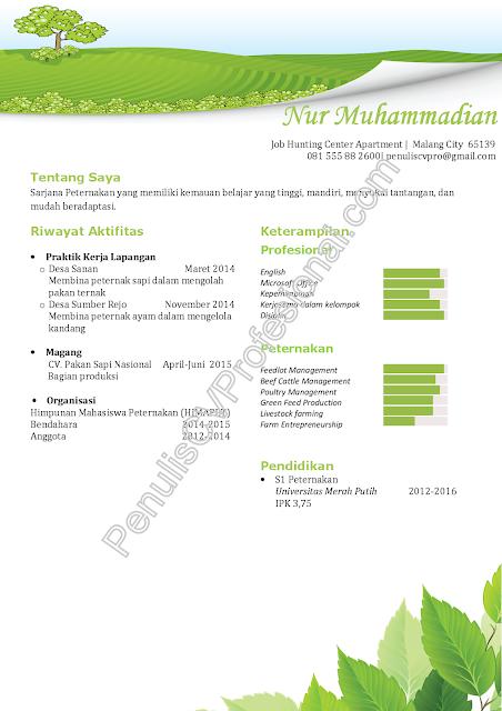 Contoh Curriculum Vitae Fresh Graduate Sarjana Peternakan