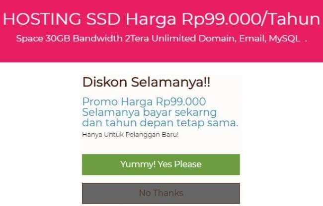 Hosting SSD Murah Meriah