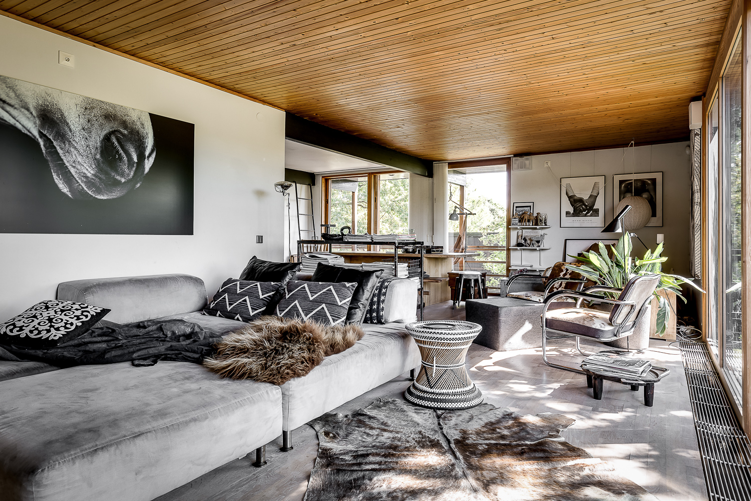 Nordic villa with gray sofa, cowhide, pattern pillows