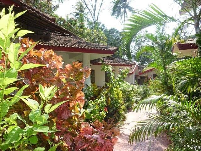 Boons Ark Guesthouse Vagator Goa