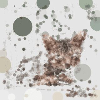 A cat photo in polka-dot pattern with this generative art code.