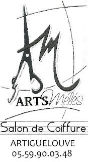 Salon Arts Mélés