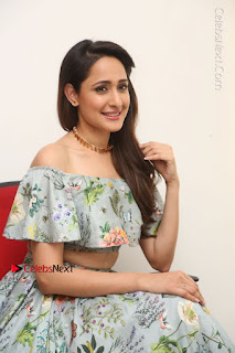 Actress Pragya Jaiswal Stills in Floral Dress at turodu Interview  0149.JPG