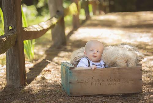 Newborn and children photography family photographer battle ground wa vancouver wa photographer