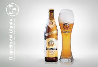 Erdinger Weissbier, en su vaso de cerveza de trigo alemana
