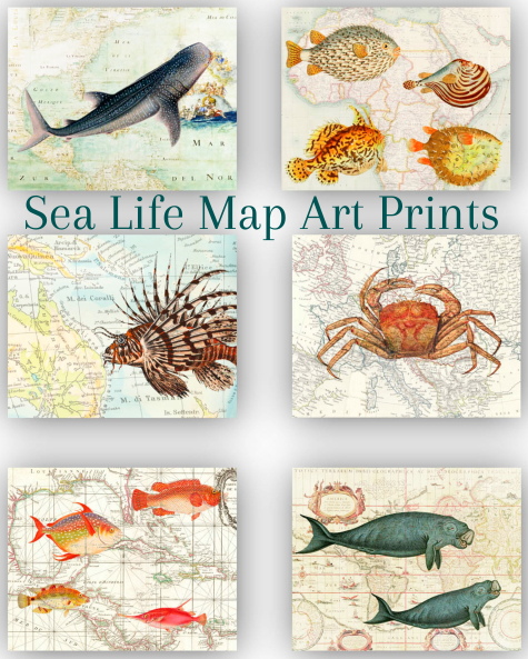 Sea Life Map Art Prints