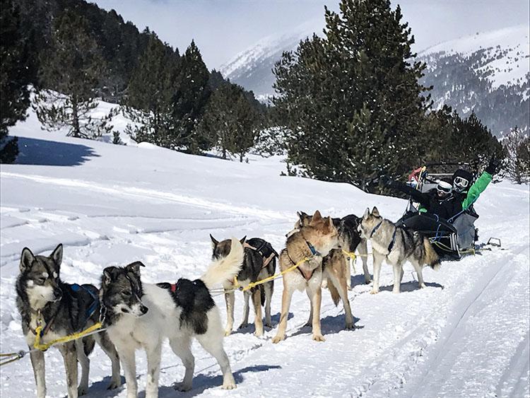 Que hacer en Andorra si no esquías: Mushing y Motos de Nieve