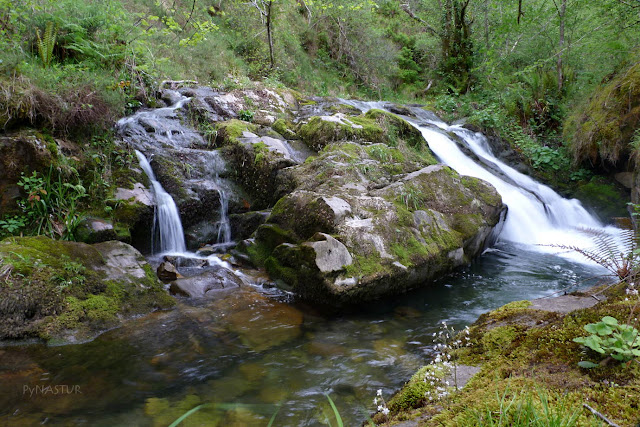 Río Infierno