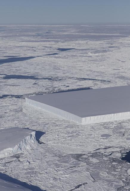 Olyat láttak az Antarktiszon, hogy még a szakemberek is meglepődtek (fotók, videó)