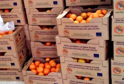Σήμερα η δωρεάν διανομή πορτοκαλιών στο κτίριο ΚΕΓΕ Παραμυθιάς