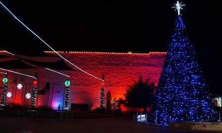 Christmas Light Installation Austin