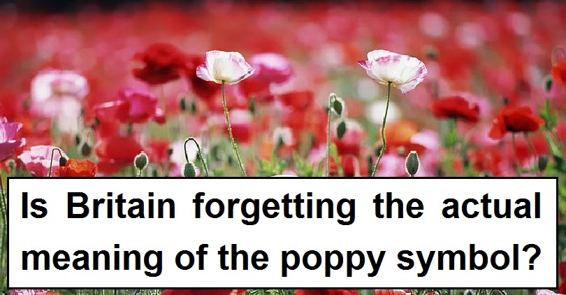 Is Britain Forgetting The Meaning Of The Poppy Symbol