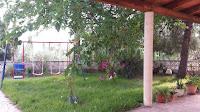 chalet en venta urb tossal de vera castellon jardin