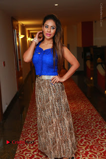 Telugu Actress Srilekha Reddy Latest HD Pos in Sleeveless Blue Top at Muse Art Gallery  0098.JPG