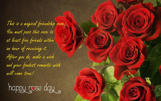 Happy Rose Day 2017 Images Wallpapers of Rose Day