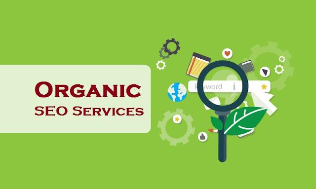 Organic SEO Service