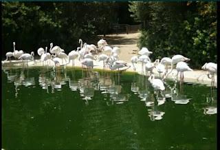 El Zoo de Jerez