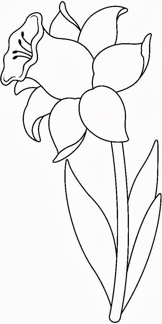 Tranh tô màu bông hoa 5