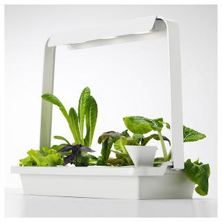 Zdjęcie żarówki do uprawy roślin VÄXER z IKEA