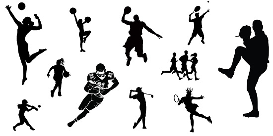 Importance of Sports in School Essay