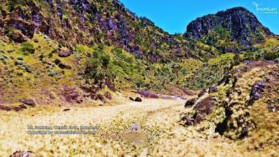 Pendakian Gunung Sumbing 3.371 via Banaran