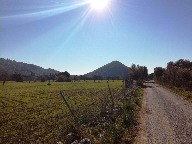 Puig de Sant Miquel (191 m), quel cucuzzolo :-)