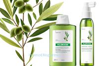 Logo  Concorso Klorane e con Green Family vinci kit di prodotti