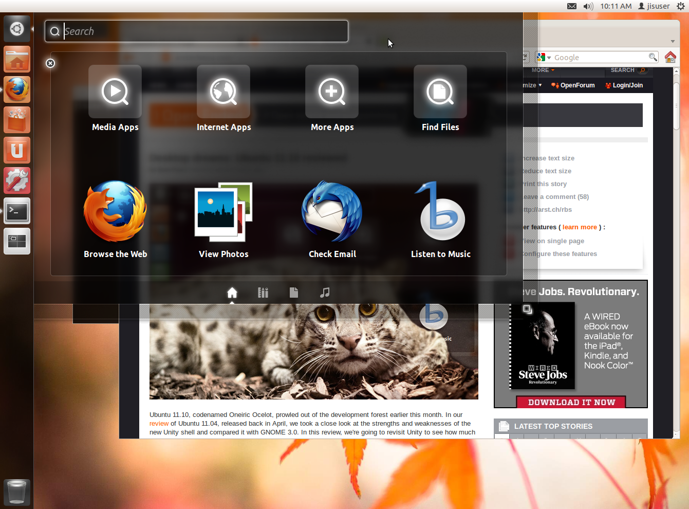 At Work With Linux - Ubuntu 11 10, Day 2