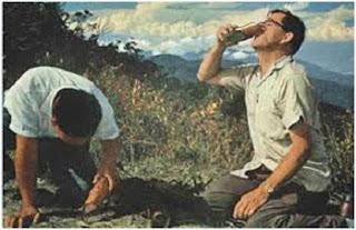 Manfaat kantong semar Nepenthes - berbagaireviews.com