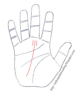 शनि पर्वत पर भाग्य रेखा के दोनों तरफ छोटी छोटी समान्तर रेखाए होने पर व्यक्ति परिश्रमी होता है लेकिन उसको सफलता बहुत बाद (मध्य आयु) में मिलती है ।