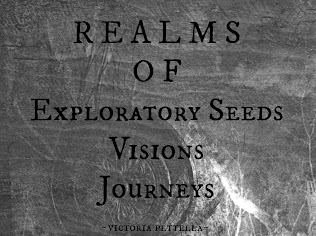 Realms of Exploration