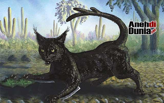 Kucing Kaktus