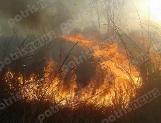 Επί ποδός η Πυροσβεστική Υπηρεσία για την κατάσβεση πυρκαγιών