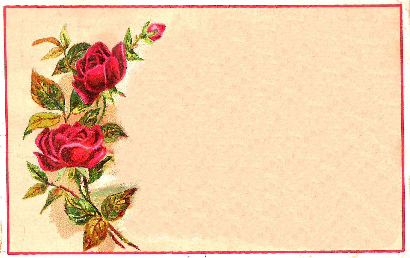 The Graphics Monarch Printables Red Rose Blank Label