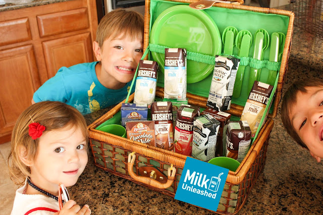 bringing our shelf stable milk to our summer bucket list destinations